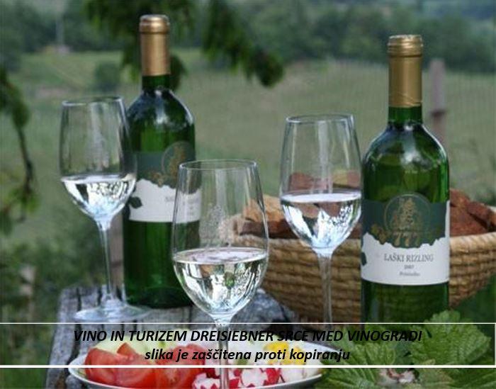 dreisiebner  vino in turizem srce med vinogradi3